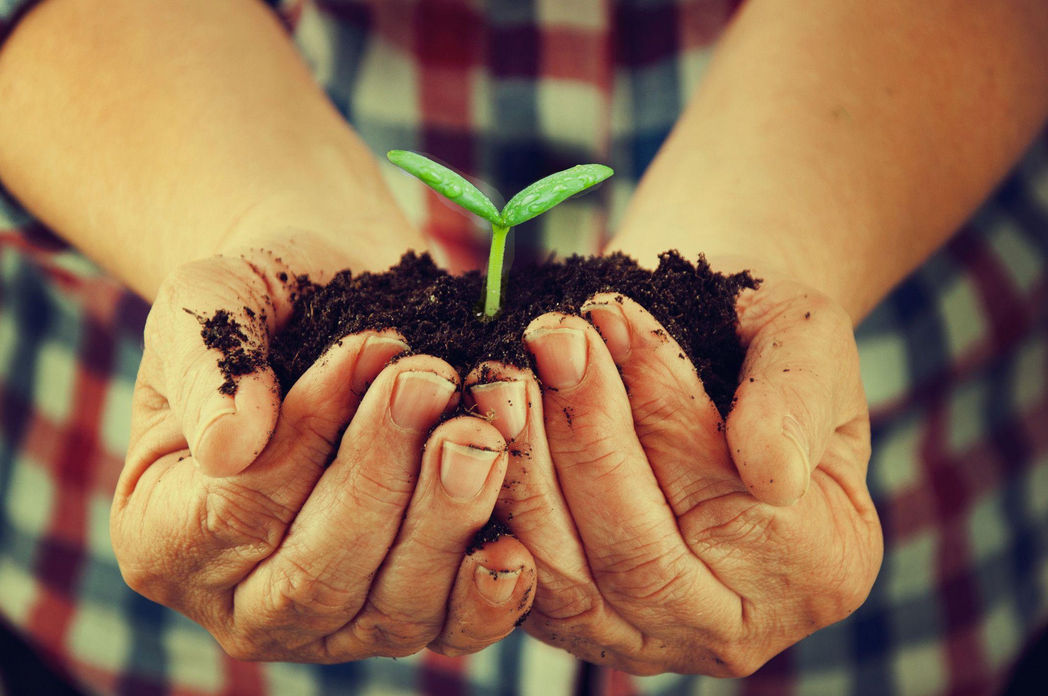 agricultura ecológica del campillo